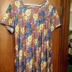 PICNIC Floral Stunner Lularoe Carly Dress